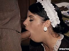 Dazzling brunette babe is wearing maid's uniform and nylon stockings. She gives deepthroat blowjob before getting drilled deep up her butt hole in a standing pose.