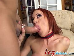 The amazing Shannon Kelly wears her sexy stocking while she sucks a big hard cock and ends up taking it up her tight little butthole.