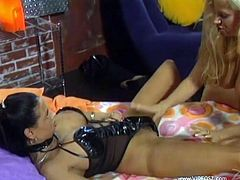 Seductive raven-haired enchantress kisses busty blonde diva with passion. Afterwards black-haired sexploitress sits on blondie's face to get her pussy eaten.