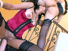 Press play on this hot lesbian scene where these smoking hot brunette milfs have sex on camera while wearing sensual lingerie.
