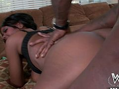 Hardcore doggystyle fuck for nasty and torrid chick