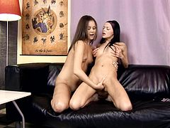 Petite brunette lesbians Angellina and Dulce are having a nice time together. The babes caress each other tenderly, then demonstrate their awesome fingering skills.