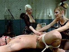 This male slave is in for some serious pain now that these two amazing looking dominatrix women have him tied up in rope. They stretch his asshole with their hands, and then they shove a strap on up there. He can't even enjoy it because he is painfully locked up in chastity.