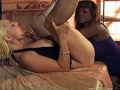 Desirable blonde enchantress spreads her legs letting ebony slut lick and finger her eager snatch. Thereafter chicks bring pleasure to each other in 69 pose.