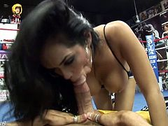 This sporty brunette is one hell of a boxer! Standing there and trading with a hot puncher like Daisy Marie was an idiotic move. She kicked her boyfriend's ass. Then she finished him off with a blowjob.