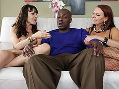Lexington Steele is having fun with salacious milfs Janet Mason and Dana Dearmond, wearing fishnets. The sluts show their boobs to Lexington and try to tempt him.