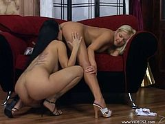 Eye catching blonde seductress and busty brunette hottie lick each other's drooling cooches. Then raven-haired skank gets straponed doggystyle and rides that rubber tool in a reverse cowgirl pose.