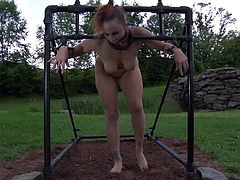 This dirty piggy slave is out in the yard, tied up in her restraint device. Her master comes out with her daily meal and pours the slop into her food dish. He adjusts her restraints and makes her stand up, while bending over. Then he adjusts the device again and she falls to her knees.