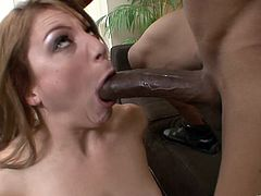 The gorgeous Aurora Snow enjoys getting her sweet little pussy rammed by a huge black cock after giving him the hottest head.