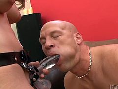 Caring masculine guy gets a blowjob before being pegged hardcore from all directions by a horny doll with hot ass in a strap on