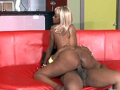 Slutty ebony Betty Boo enjoys sucking a big black cock and gets a deep doggystyle fuck on the couch from this horny guy.