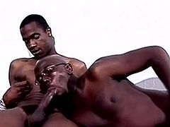 We have that Nice chocolate men onto that movie as they have nasty and feisty onto that clip. Look at as of A blokes starts going down onto his mate and starts dick sucking this large large zonker and lovin' it inside his mouth