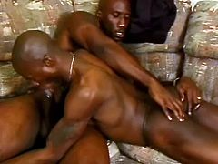 This huge black dude gets his massive dick sucked by his horny friend and ends up ramming the guy's poor little ass with that tasty monster.