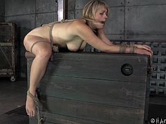 Her ass is the perfect sex toy and she knows it. Our blonde slut has been tied up tightly and she's being used far beyond her limits. With a metal hook shoved in her anus and clamps pulling her pussy lips, the blonde can barely stand so much pain, not to mention a sever pussy spanking. How much can she take it?