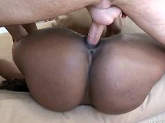 Ebony babe with big tits and sexy ass masturbates and gives blowjob in interracial session before riding white cock and taking cum in mouth and facial