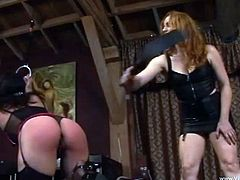 Hardcore BDSM brunette chick in lingerie and nylons gets bound and enjoys spanking and torture by mistress in femdom bondage scene