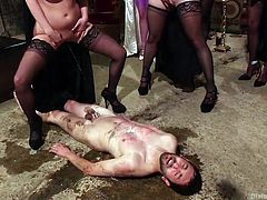 Well well, what do we have here? There's a bunch of very kinky sluts that want to have some fun with this lucky guy and boy do they know how to have it! The redhead one spank his ass, fuck him with a strapon and then put him down on the floor and piss all over him! Look at them, so fucking hot and dirty!