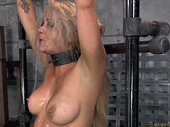 Sucking cocks is what this hot blonde whore loves to do most. This time she will get what she craves for. She got tied up by an