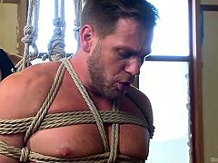 Hans is a beautiful male with big muscles and a hard cock that needs sucking. His kinky executor tied him up really tight and brought a gay whore to suck his dick. The sex slave was knelt and sucked Hans, like it or not. Well, we think Hans like it and that he will cum a lot in that slutty mouth! Enjoy!