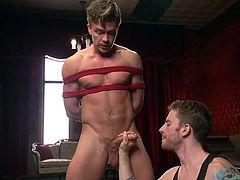 He's a hottie and here he is, all tied up and hanged like a slut. Mister Lucas is about to get sexually used and damn, what a show will it be. The executors are almost drooling for his dick and one of them begins to suck his penis wet and hard. Then, Lucas gets ass fingered and a dildo is used to stretch his anus
