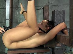 Restraints deriving from bondage might intensify pain and pleasure. Tinslee is wearing a ball gag and her hands are strongly tied up. The helpless brunette babe with small tits is not in the position to object. Legs widely spread, she is awfully banged! Click to see!