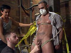 This construction worker ignored how important safety at work is so the guys gave him a lesson! They've tied him tight on that wooden beam, putted a dust mask on his face and jerked his dick. He was then ball gagged and one of the executors brought in a vibrator and teased his dick. Curious what's next?