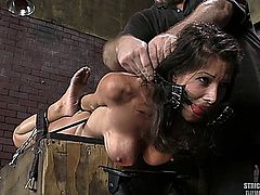 Gorgeous hot babe tied and fucked