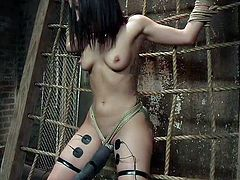Will this slave earn and orgasm or will she proves that she is a slave that doesn't have what it takes. She is tied to the rope net and has electric shock pads attached to her inner things. the jolts send impulses to her pussy which makes her dripping wet. She earned her right to suck the master's dick.