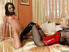 Blonde Sophie Lynx has some time to give some sexual pleasure to lesbian Brandy Smile