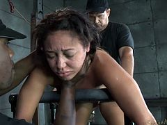 The video is a winning one without any doubt! If you are a seeker of intense bdsm hardcore scenes, click to see two horny cocks that posses a helpless bitch in the dirtiest of ways. Click to see each other of them taking turns in fucking her hard from behind while she's sucking dick.
