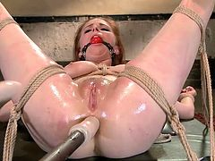 The blonde bitch deserved to be taught a lesson, so now she's about to get a special treatment. She has been tied up strongly with ropes while laying down with her legs spread widely. Two vibrators find their way to her pussy and ass hole. Click to see Penny reaching orgasm in a brutal way!