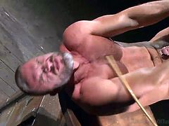 This unlucky slave is tied up with his legs and arms up in the air. He is on his back which is exactly where his master wants him to be. The master takes the cane and whips the gay slave hard until he has red scars all over his body. Now his throat is fucked with master's cock.