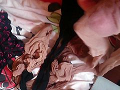 cum pantyhose of NOT my sister wife