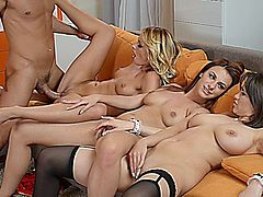 cinthia doll and ivana sugar and hannah sweet