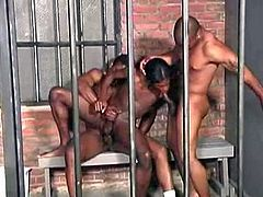 Delicious black cocks in prison threesome. Romeo is working the hole, sucking Solomons dick, and gets caught by the cops. Flash forward to the cell: Solomon mentions he still hasn't
