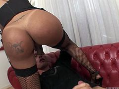 Black kinky tranny in fishnets mouth fucks white freak hard