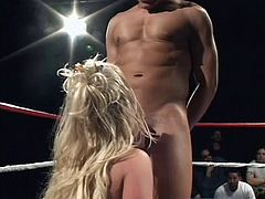 If you are into hungry attractive milfs, click to see four lusty ladies almost naked, playing dirty, while in the boxing ring. Down on knees, the blonde and brunette haired sluts are doing their best, to please the horny guys and offer an exciting blowjob. Dare to click and enjoy the hardcore scenes!