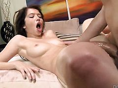 Tiffany Fox has a nice time blowing Will Powerss worm