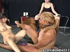 These sluts must do anything and everything, to entertain and please their white mistress. She makes the slaves rub their butts together and then, scissor each other with a double sided dildo. The asian slaves have to lick their pussy juice off the dildo, while mistress masturbates with a vibrator.