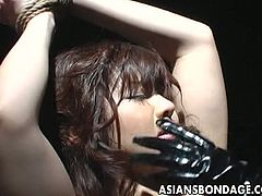 Very hot Asian babe gets to be tied up and stripped down so her erect nipples get to be sucked. Her friend is all over her pleasing the pussy.