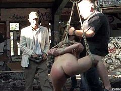Blonde girl with nice juicy ass and pair of magnificent tits is getting publicly disgraced by Reinhard and his mates. Watch them taking her to public places tied up & naked, as they hung her up with fancy rope ties, and fucking her slutty wet holes as well, as playing with her lovely body at will.