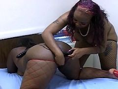 Lesbian bbbw doing a funny scene with licking the pussy and toying in this tube.