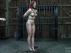 Busty red head is suspended and punished in dark room