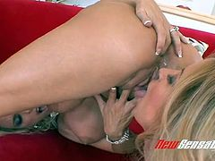 Horn-mad bootylicious blonde lesbian Holly Halston gets pussy licked