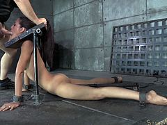 Sexy brunette chick Lyla Storm gets strictly restrained in stocks and mouth banged tough