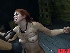 Rose is down in the sex basement, tied up and right where the master wants her. He chokes her, as she sits on the sybian. The master shoves his big dick down the cute sex slave's throat and makes her gag on it.