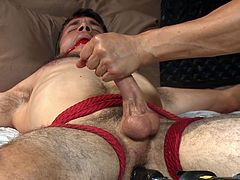 Horny naked guy is tied to the bed and his mouth is gagged with gag ball, as gays around him are enjoying his body. They inserted a toy in his ass, sucked and jerked his cock, to make him cum like a crazy fucker. And finally he shots it pretty thick and hard!