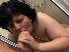 Chubby whore gives blowjob to young man and gets her pussy fucked