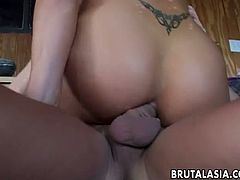 Appetizing harlot Jayna Oso in stockings gets her muff fucked