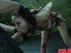 The master shoves his cock down the tied up slaves throat, while they are in his sex dungeon. She is in rope bondage, so she can't move, while he slides his cock over her pussy lips and then, inserts his penis deep inside her. He face fucks her hard.